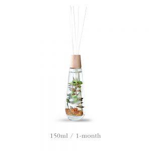 Dewdrop Diffuser Neat Herbs